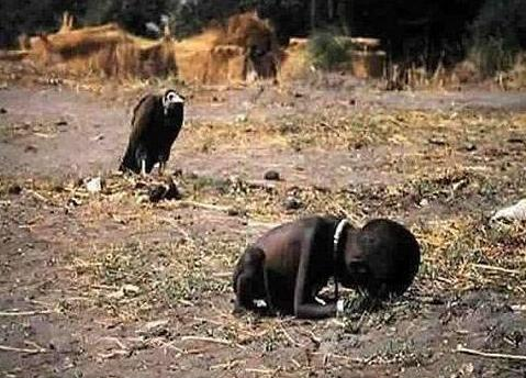Vulture & A child of poverty