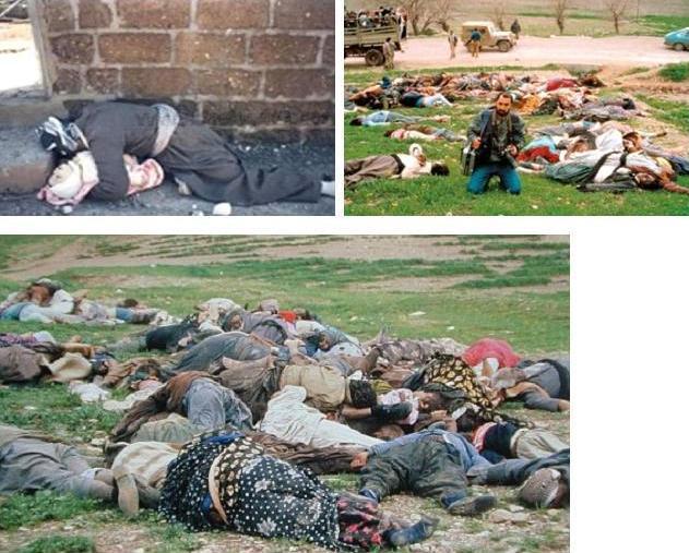 saddam hussein genocide essay