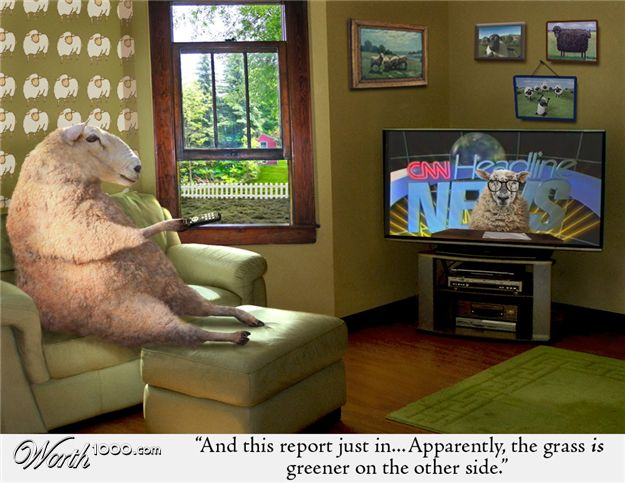 sheeple_watching_tv